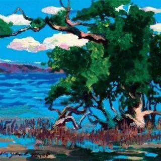 맹글로브나무
