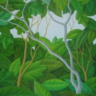 나뭇잎 사이로 - 숲