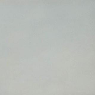 White 7961 이미지