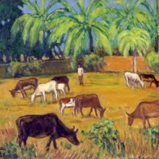 방글라데시의 소