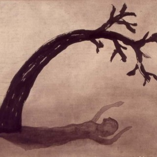나무와 그림자