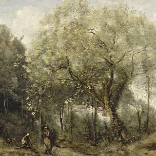 개오동나무, 빌 다브레의 추억