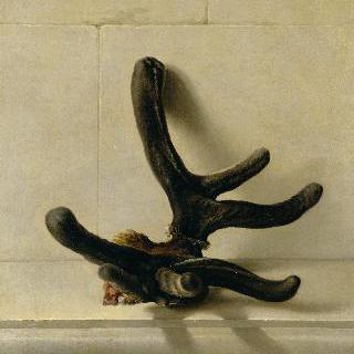 1732년 4월 퐁텐블로에서 왕이 발견한 괴상한 사슴 뿔