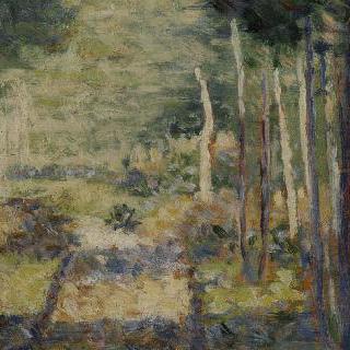 바르비종 숲속의 오솔길