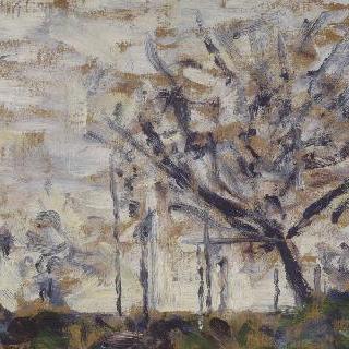 나무들, 겨울