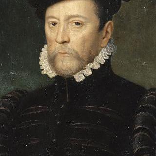 프랑수아 드 세포, 비유빌의 영주(1510-1571), 1562년 프랑스군 총사령관