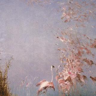 홍학의 비행, 바카레 연못