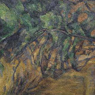 비베무스의 바위와 가지들 / 액상프로방스 부근의 채석장