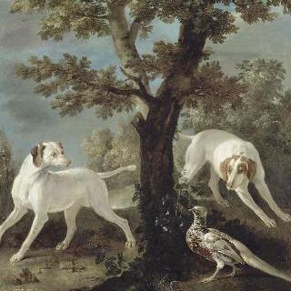 페를과 폰, 루이 15세 (1710-1774)의 사냥개