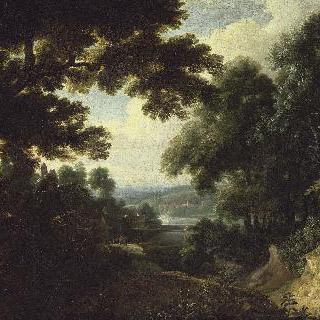 숲속의 풍경