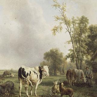 흰 소와 다른 동물들이 있는 풍경