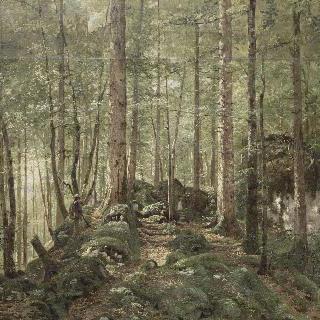 주라 숲속의 사냥꾼