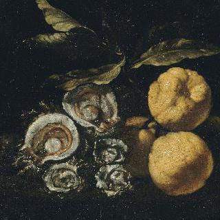 굴과 마르멜로 열매가 있는 정물
