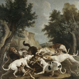늑대 사냥