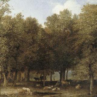 라 에의 숲