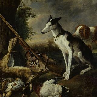 개들과 사냥감