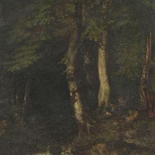 밀렵꾼이 있는 숲 속