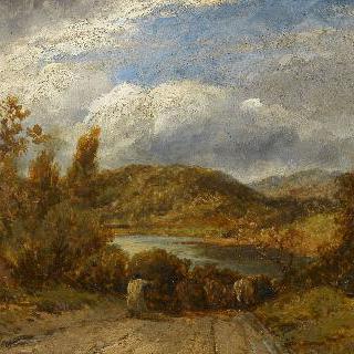 소 떼가 있는 풍경