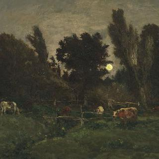 빌레르빌 그라브 초원 (칼바도스)