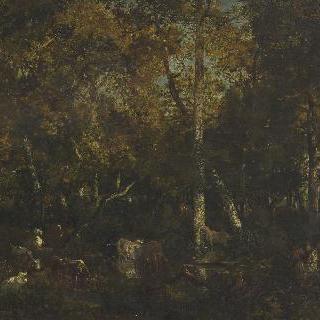 숲의 내부 (바-브레오의 비유 도르무아) (퐁텐블로 숲)