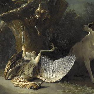 자고새와 해오라기를 지키는 하얀 개