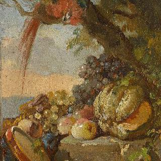 잉꼬와 과일