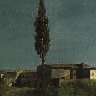 빌라 파르네세에서 : 포플러 나무 두 그루