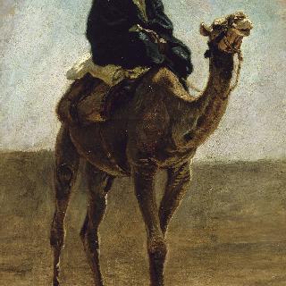 낙타를 부리는 사람