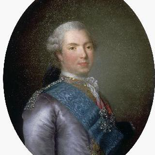 루이 스타니슬라스 자비에 드 프랑스, 프로방스 백작