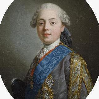 루이-스타니슬라스-자비에 드 프랑스, 프로방스 지방의 백작(1755-1824)