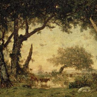 퐁텐블로 숲, 일몰