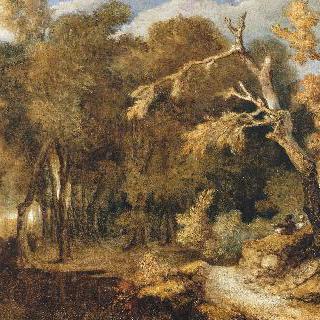 숲이 우거진 풍경