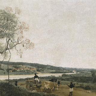 소가 끄는 수레, 브라질의 풍경