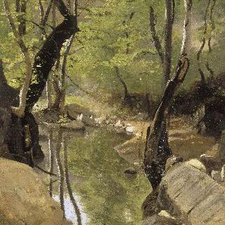 쿠쟁 숲 기슭