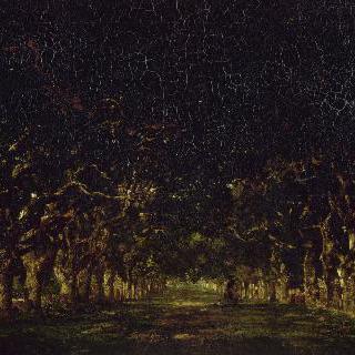 브레쉬르 근처 술리에르 성의 밤나무 숲길
