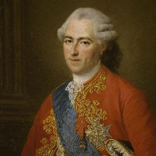 63세 때의 루이 15세, 프랑스와 나바르의 왕