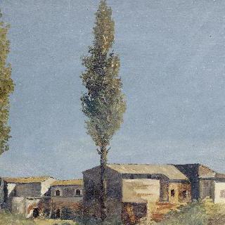 빌라 파르네세의 포플러 나무