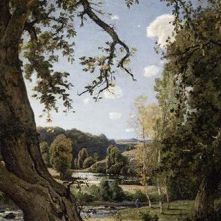 오래된 호두 나무. 알리에의 추억