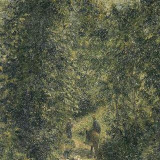 여름의 숲속 길