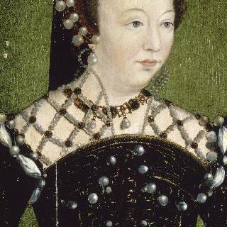 카트린 드 메디시스, 프랑스 여왕