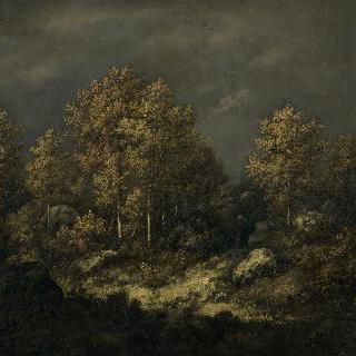 장 드 파리 언덕, 퐁텐블로 숲