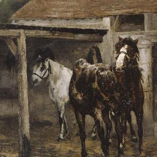 마구간의 말들