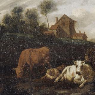 쉬고 있는 가축