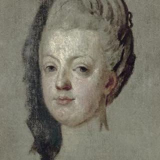 1772년 왕세자비 마리 앙투아네트
