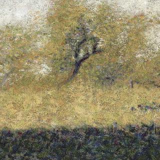 봄의 숲 기슭