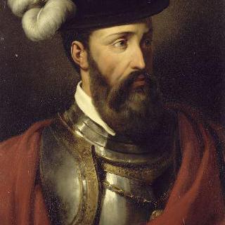 프란체스코 피자로, 항해사이자 정복자