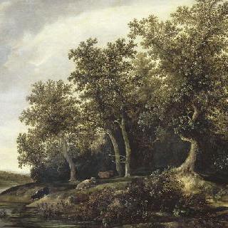 강가의 숲 변방의 풍경