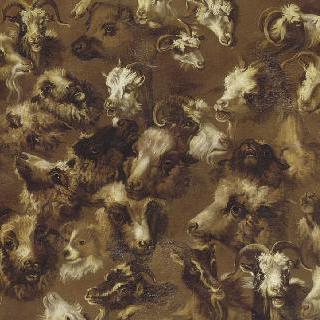 양, 숫양, 목동, 개, 염소들의 두상 (습작)