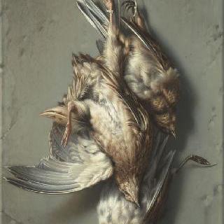 메추라기와 종달새