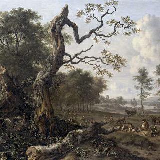 숲의 변방